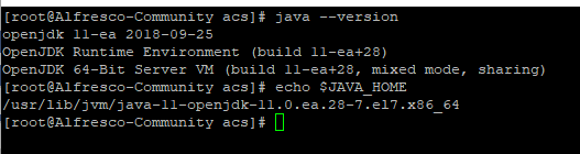 JDK version 11.PNG